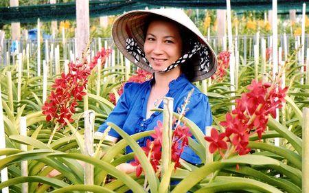 Nu ty phu xinh dep voi vuon lan Huyen Thoai - Anh 1