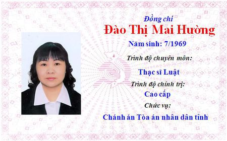 Ong Le Truong Luu lam Bi thu Tinh uy Thua Thien Hue khoa 15 - Anh 25