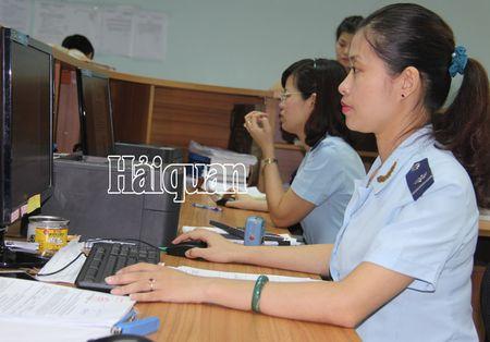 VNACCS/VCIS thu hut hon 66.000 doanh nghiep tham gia - Anh 1