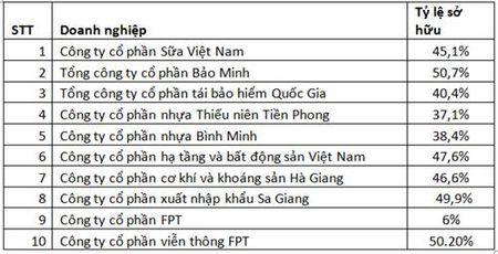 Hon 3 ty USD cua ty phu My se do ve Viet Nam - Anh 2