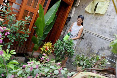 Nha Hoa hau Viet: Tu don so gian di den be the, khang trang - Anh 10