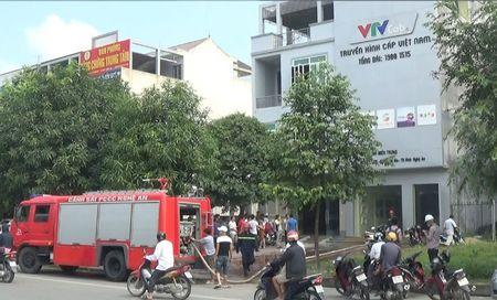 Hoa hoan tai tru so Truyen hinh cap Viet Nam - Anh 2