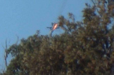 Mo xe tiem kich F-16 TNK ban ha may bay Su-24 Nga - Anh 1