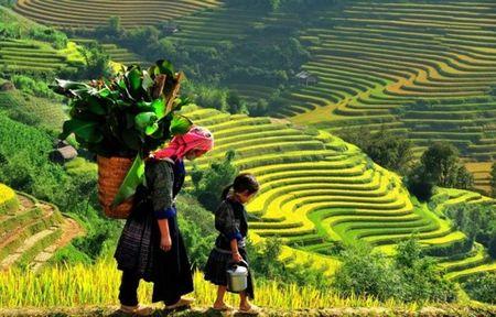 Viet Nam dep gian di tren bao Anh - Anh 7