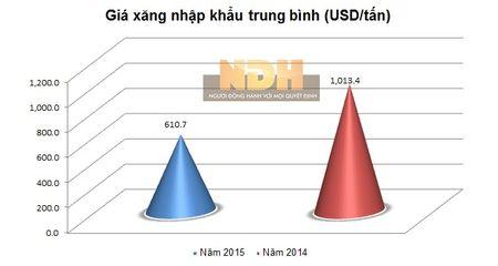 Viet Nam co the tiet kiem duoc 1 ty USD tien nhap khau xang nam 2015 - Anh 3