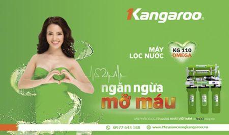 Quang cao 'no' cua Kangaroo: Phat the nao moi hop ly? - Anh 1