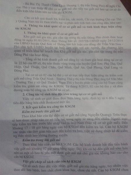 "Ket luan ve vu heo chet van ra cho o Que Son, Quang Nam: Khong ""chot"" duoc nguyen nhan heo chet - Anh 3"