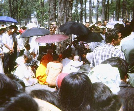 Mien Nam Viet Nam nam 1967 trong anh cua Robert Plumtree (1) - Anh 15