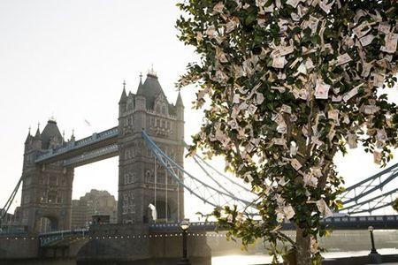Vi sao cay xanh o London tri gia den 204.000 ti dong? - Anh 1