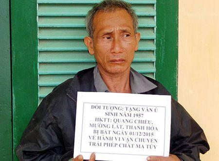 Bat doi tuong van chuyen trai phep 1.000 vien hong phien - Anh 1