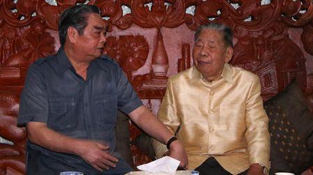 Doan dai bieu cap cao Dang va Nha nuoc du ky niem 40 nam Quoc khanh Lao - Anh 2