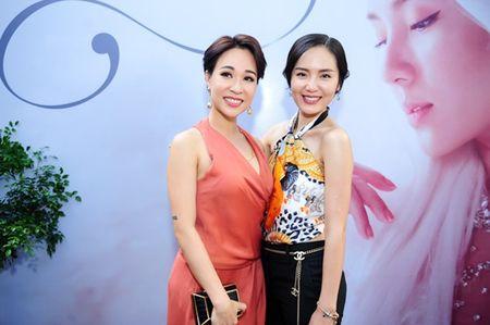 Phuong Linh muon tan tinh Duong Khac Linh - Anh 4