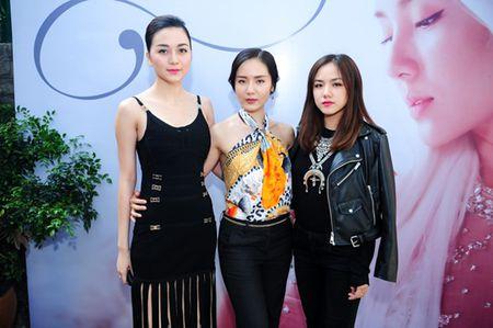 Phuong Linh muon tan tinh Duong Khac Linh - Anh 6