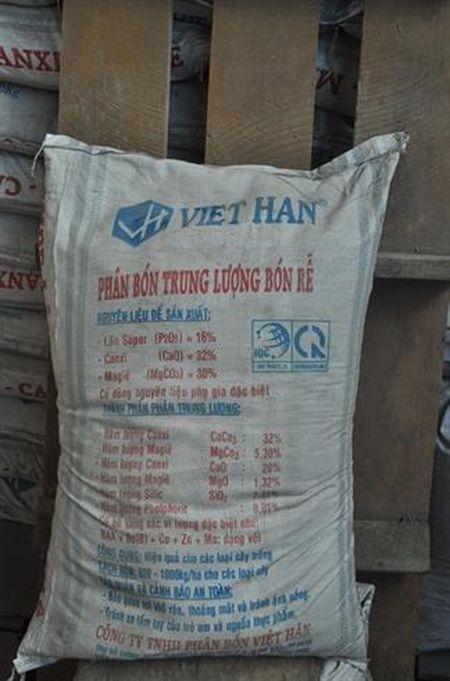 Loan phan lan - Anh 2