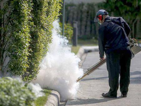 Thai Lan xac nhan ca mac virus Zika trong nuoc dau tien - Anh 1