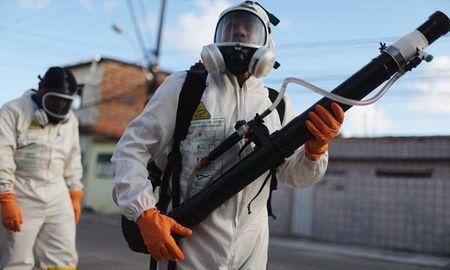Thai Lan, Duc, Australia xuat hien truong hop nhiem virus Zika - Anh 1