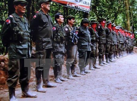 Chinh phu Colombia hoi thuc ELN xac dinh thoi diem hoa dam - Anh 1