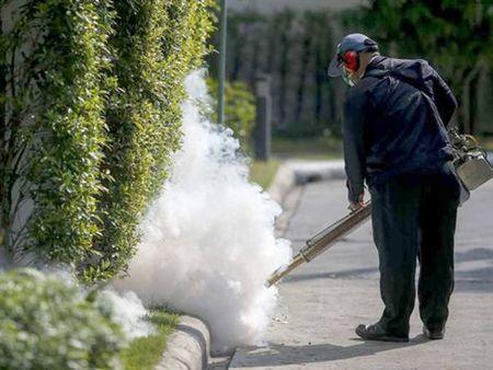Australia, Thai Lan phat hien truong hop nhiem virus Zika dau tien - Anh 1