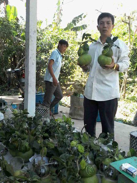"Trang dem dong hang o ""Vuong quoc buoi ho lo"" - Anh 4"