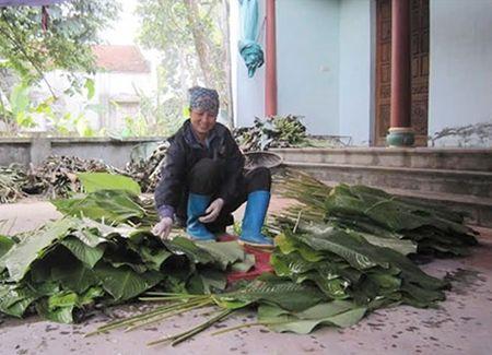 Lang la dong Trang Cat nhon nhip don Tet - Anh 2