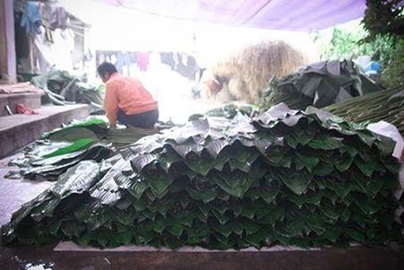 Lang la dong Trang Cat nhon nhip don Tet - Anh 4