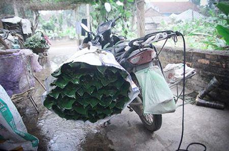 Lang la dong Trang Cat nhon nhip don Tet - Anh 5