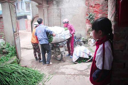 Lang la dong Trang Cat nhon nhip don Tet - Anh 6
