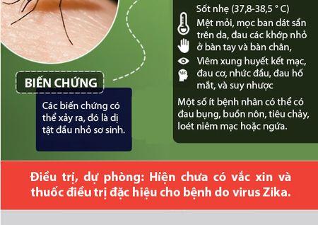 Nhung dieu nguoi Viet phai biet ve virus 'an nao' Zika - Anh 6