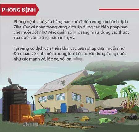 Nhung dieu nguoi Viet phai biet ve virus 'an nao' Zika - Anh 7