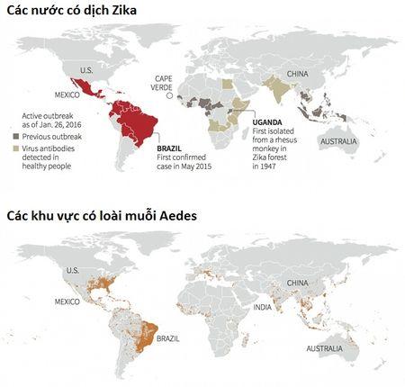 Nhung dieu can biet va cach phong tranh virus Zika - Anh 4