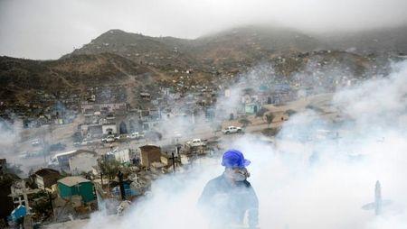 Nhung dieu can biet va cach phong tranh virus Zika - Anh 9