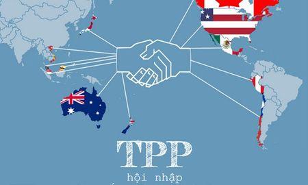 Chinh phu ban hanh Nghi quyet ky Hiep dinh TPP - Anh 1
