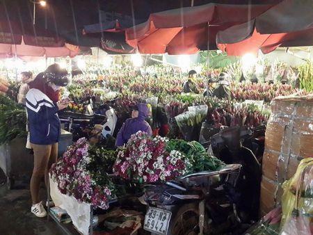 Cho hoa dem Quang An: Ruc ro va nhon nhip ngay giap tet - Anh 11