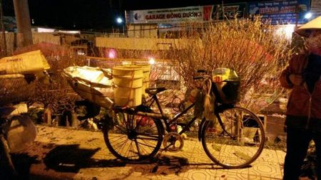 Cho hoa dem Quang An: Ruc ro va nhon nhip ngay giap tet - Anh 13