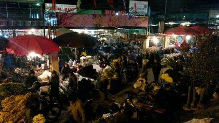 Cho hoa dem Quang An: Ruc ro va nhon nhip ngay giap tet - Anh 1