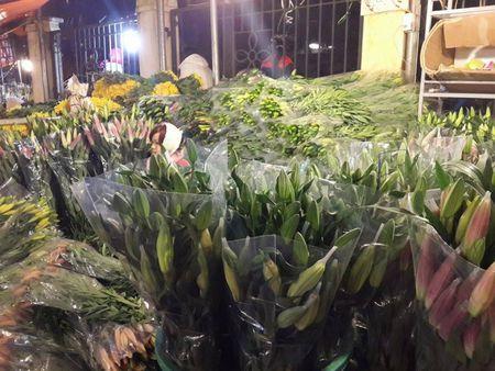 Cho hoa dem Quang An: Ruc ro va nhon nhip ngay giap tet - Anh 4