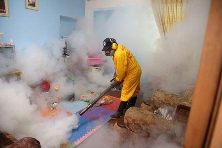 Chau My phong chong virus gay teo nao Zika - Anh 1