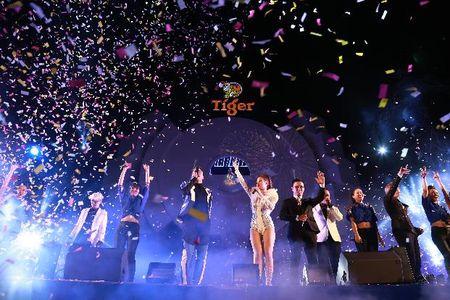 Tiger Remix tiep tuc bung no ngay truoc Tet Nguyen dan - Anh 8