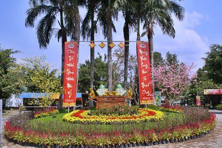 Tet Binh Than: Khu Du lich rung Madagui niu chan du khach - Anh 1