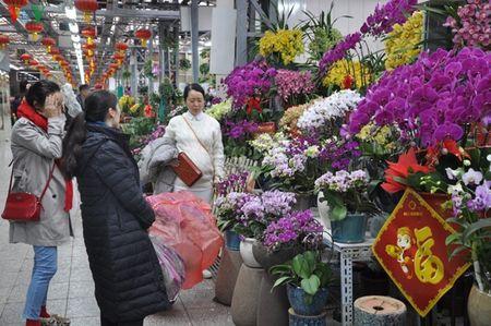 Bac Kinh chao Nam moi Binh Than trong su tinh lang - Anh 4