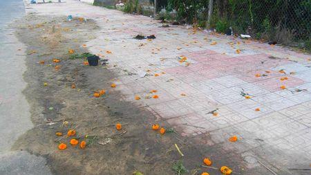 Hoang tan khu ban hoa Tet sang mung 1 - Anh 4