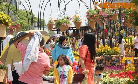 Sai Gon se lanh, mu suong... dan chen kin duong hoa Nguyen Hue - Anh 4