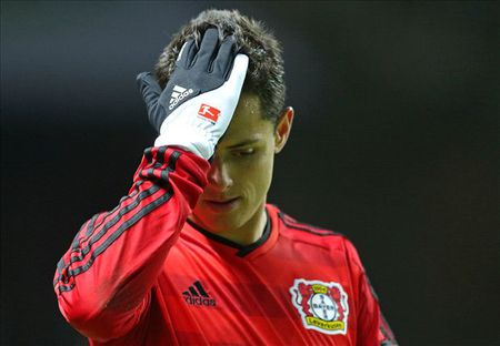 Bayern cung muon co Javier Hernandez - Anh 1
