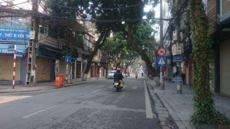 Ha Noi thanh binh dep lung linh ngay mung 1 Tet Binh Than 2016 - Anh 12