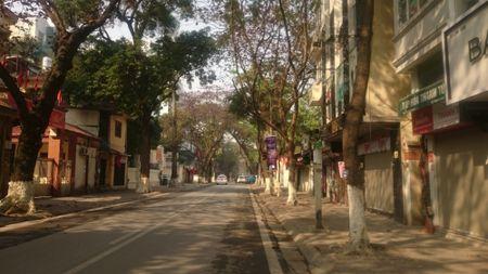 Ha Noi thanh binh dep lung linh ngay mung 1 Tet Binh Than 2016 - Anh 1