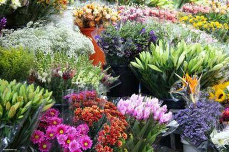 Meo giu hoa tuoi lau trong 9 ngay Tet chi em nen biet - Anh 1