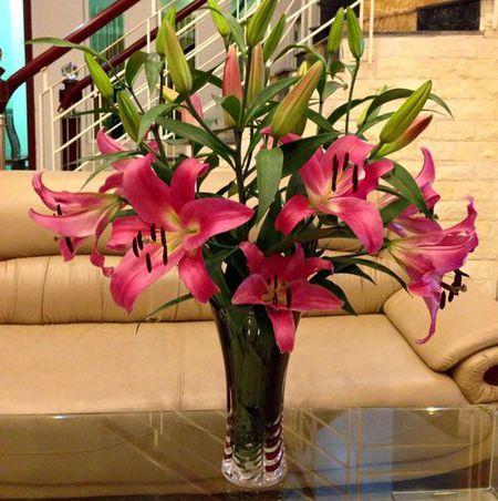 Meo giu hoa tuoi lau trong 9 ngay Tet chi em nen biet - Anh 2