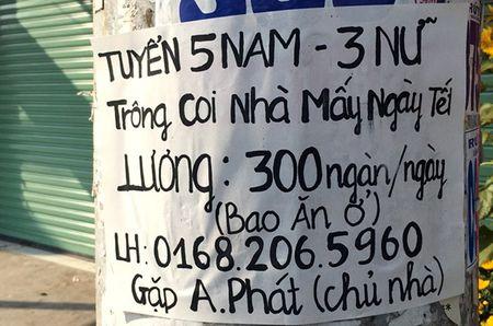 Giu nha thue trong ngay tet o Sai Gon - Anh 2