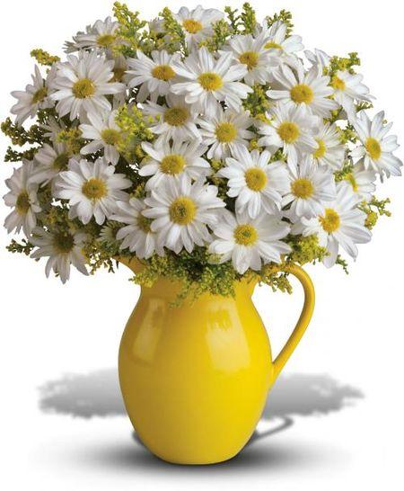 Hoa tet va thu choi hoa dao tao nha cua nguoi Ha Noi - Anh 1