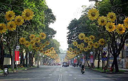 Duong pho Sai Gon vang ve sang Mung 1 Tet - Anh 1